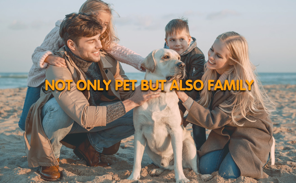 pet is your family