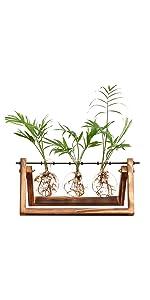 Desktop Glass Planter Propagation Planter Vase