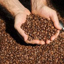 STONE STREET COFFEE BEANS