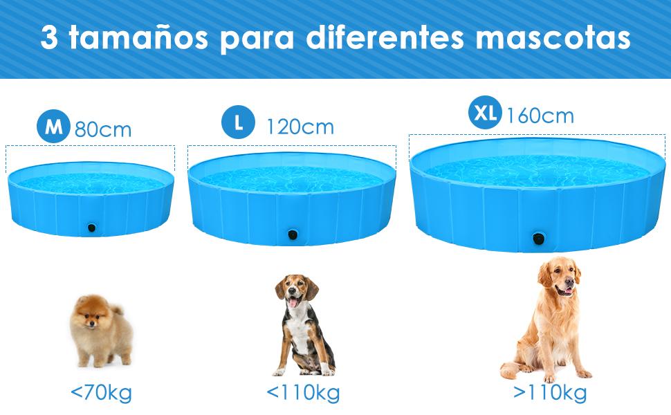 piscinas para perros de color azul, tres tamaños con pomerania, beagle, y golden retriever