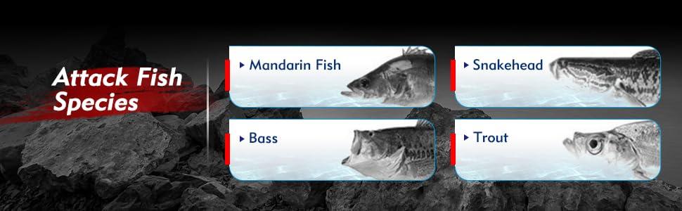 fishing jigs bass spinner baits lure bass