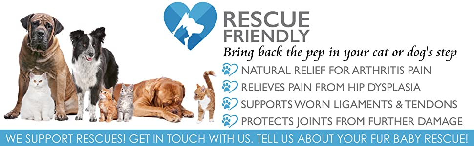 Liquid Glusosamine Chondroitin MSM for Rescues Dogs and Cats for Hips and Joints Pain Relief