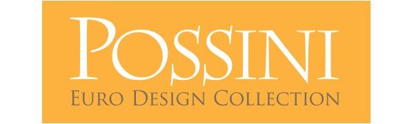 Possini Euro Design Logo
