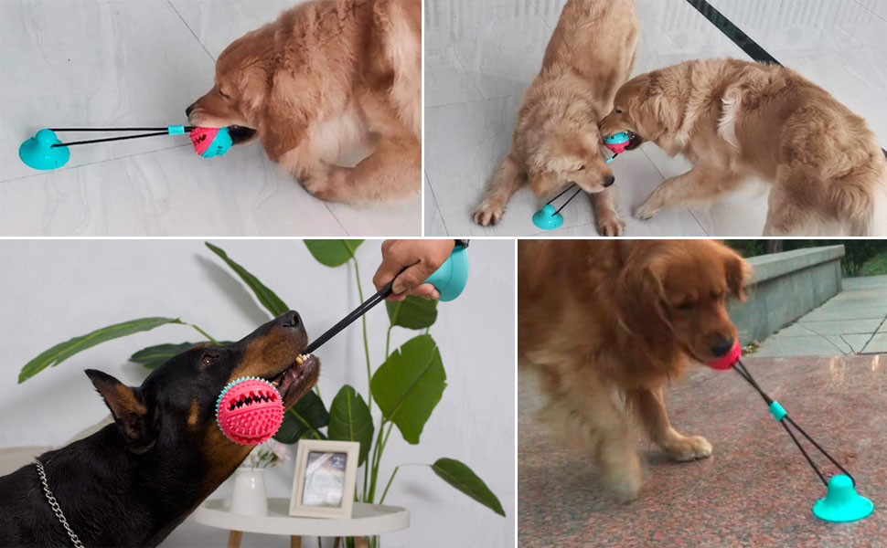 dog toy with suction cup,suction tug dog toy,spiky dog ball,dog tug of war toy with sucker