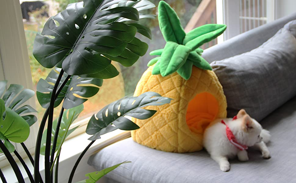 petnpurr pineapple pet house