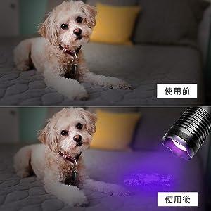 紫外線ブラックライト