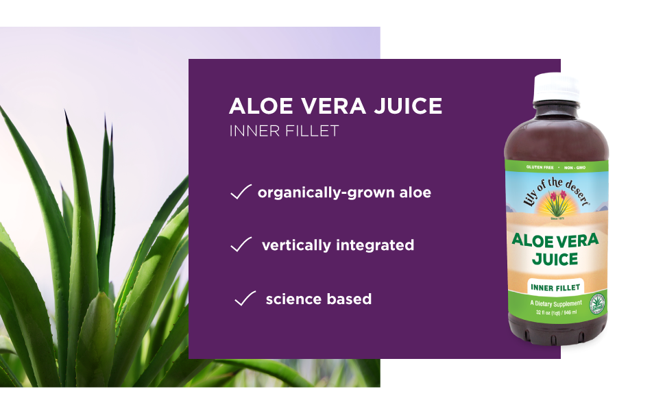 lily of the desert aloe vera juice inner fillet