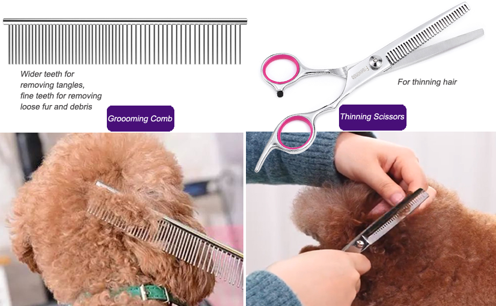 Grooming Comb & Thinning Shears