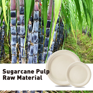 100% Sugarcane and Cornstarch Fiber