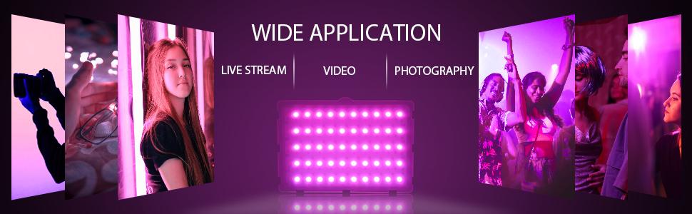 portable video light