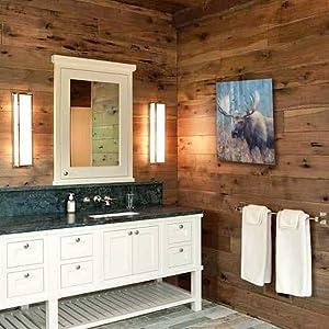 fall moose study staging rustic bathroom decor