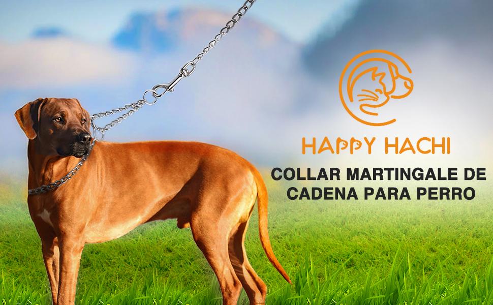 HAPPY HACHI Collar Cadena Martingale Perro Collares Perros Mediano ...
