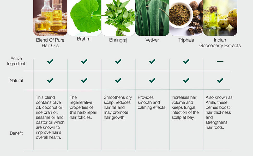 Ingradients - Ayurvedic Therapy Hair Oil
