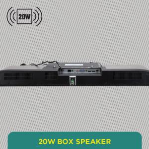 20W Box Speaker