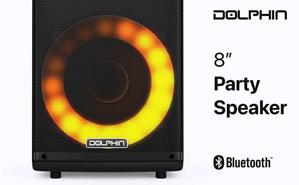 Party Speaker Bluetooth metal 8 inch pulgadas tailgate bbq outdoor portable PA lights move rugged