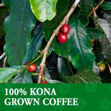 100% Kona