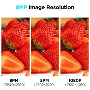 8MP Dome Camera HD Display Images