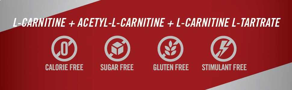 L-Carnitine, acetyl-l-carnitine and L-Carnitine tartrate