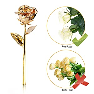 24k pink purple rose gift for her christmas gold flower galaxy forever crystal Home Decoration