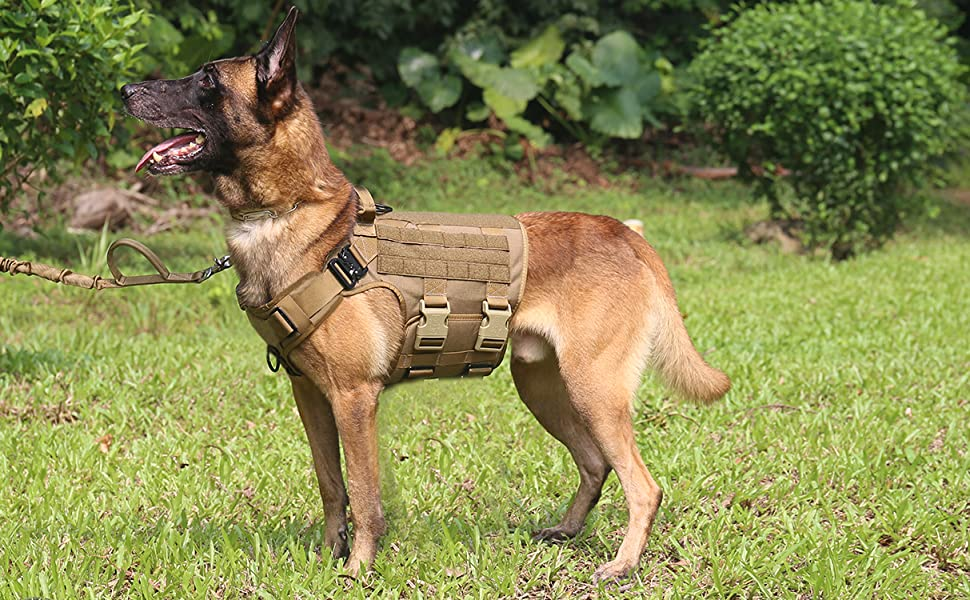 tactical dog harness large breed