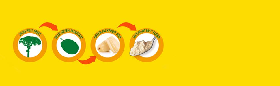 Jackfruit365 Process