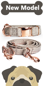 leash set