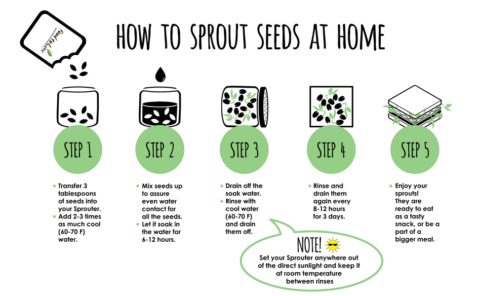 how to sprout seeds at home