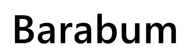 Barabum Handbag