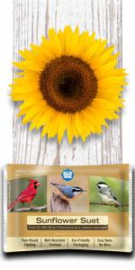 sunflower bird suet
