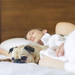 improve sleeping