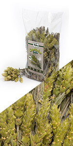 Griekse bergthee thee gedroogde kruiden hele stelen en bloemen natuurlijk verliezen infusie