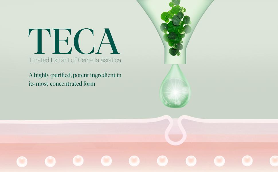 Key Ingredient TECA