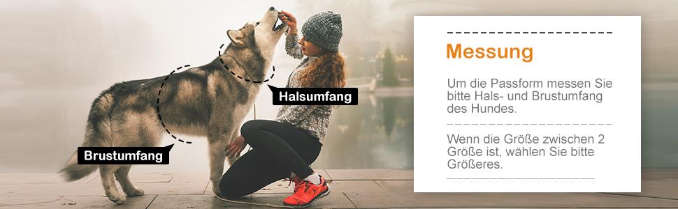 Anti Zug Geschirr No Pull Reflektierend Atmungsaktiv Geschirr Hunde Leichtes Brustgeschirr Gro/ße Mittlere Hunde Sicherheitsgeschirr Weich Dociote Hundegeschirr f/ür Gro/ße Hunde