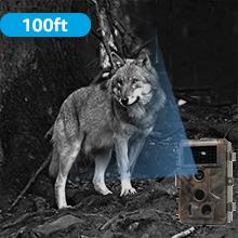 deer camera