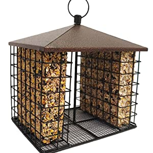 Seed cake and Seed Bar Fly through feeder