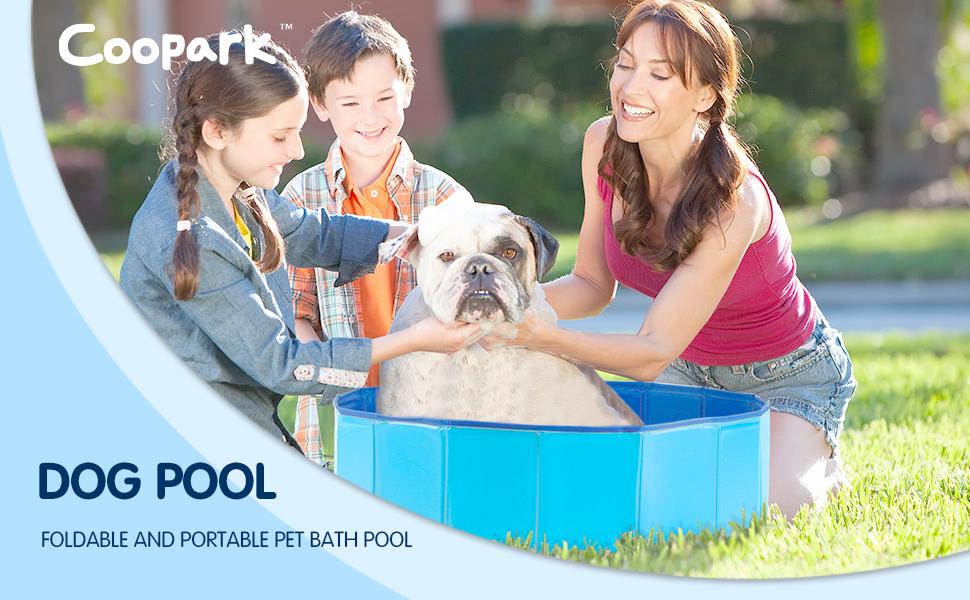 pools for dogs