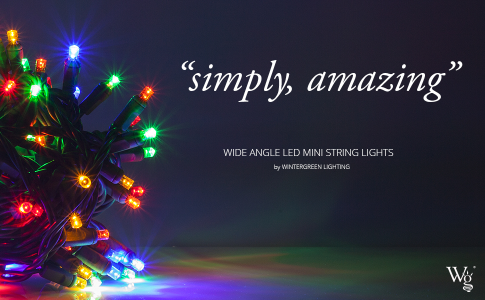 Outdoor Christmas Lights, 5MM LED String Lights by Wintergreen Lighting