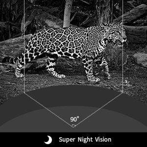 night vision trail camera