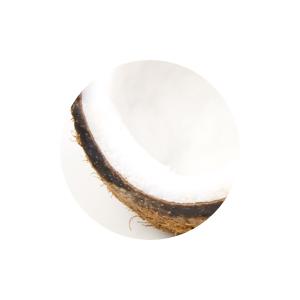 Coconut Extract moisture moisturizing cream face care skincare natural vegan