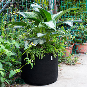 "bag gardening plants heat transfer iron on 2.5/""-5 inch"