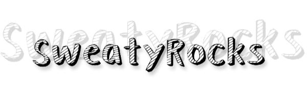 SweatyRocks basic crop top