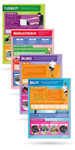 Components of Physical Fitness Posters - Set of 12