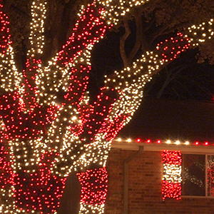 Outdoor Christmas Decorations, by WIntergreen LIghting