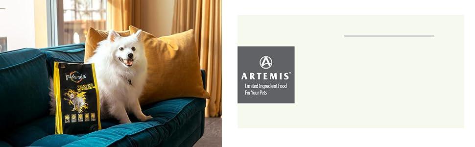 Why Artemis
