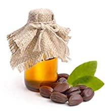 ktchn apothecary face moisturizer facial cream natural organic hydrate jojoba oil