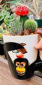 伊豆シャボテン本舗 サボテン 観葉植物 多肉植物 寄せ植え 動物マグカップ入り 植木鉢 インテリア (チンパンジー)