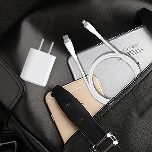 PD20W Charger for iphone