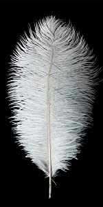 24pcs Natural White Ostrich Feathers 10-12inch for Wedding Party Centerpieces