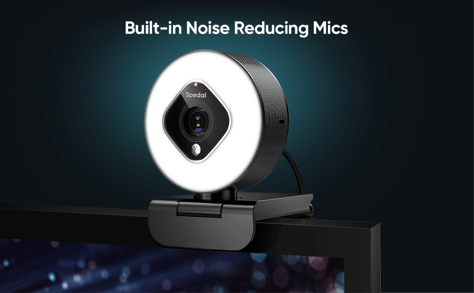 Built-in Noise Reducing Mics