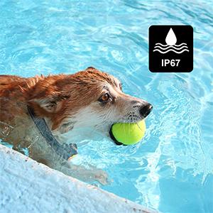 IP67 Waterproof & Durable